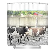In The Future We Will Have No Cow Fence  Shower Curtain
