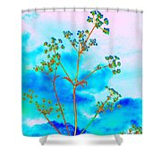 Cow Parsley Blossom 2 Shower Curtain