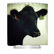 Cow In Summer Shower Curtain