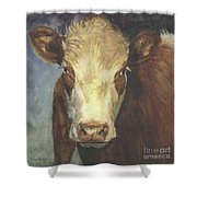Cow Portrait II Shower Curtain