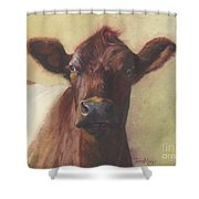 Cow Portrait IIi - Pregnant Pause Shower Curtain