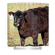Cow Tongue Shower Curtain