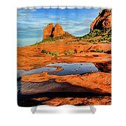 Cowpie 07-103 Shower Curtain