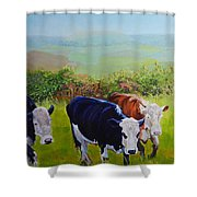 Cows And English Landscape Shower Curtain