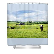Cows In The Country Shower Curtain