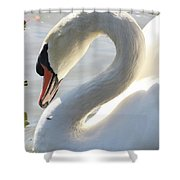 Coy Swan Shower Curtain