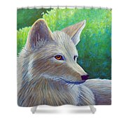 Coyote Charisma Shower Curtain