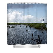 Ominous Clouds Over A Cozumel Mexico Swamp  Shower Curtain