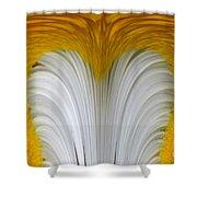 Cozy Shawl Daisy Shower Curtain