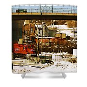 C P-2219 Shower Curtain