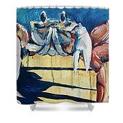 Crab Along Shower Curtain