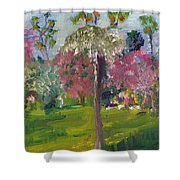 Crab Apple Blossom Time Shower Curtain