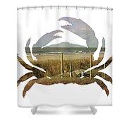 Crab Beach Shower Curtain by Michael Colgate