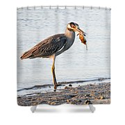 Crab Dinner Shower Curtain