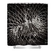 Crab Proof Shower Curtain