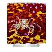 Crab Underwater Shower Curtain