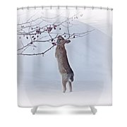 Crabapple Bunny Shower Curtain