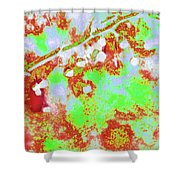 Crabapples Series #4 23 Shower Curtain