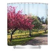 Crabtree Allee II Shower Curtain