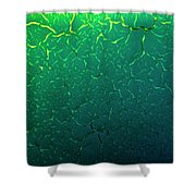 Cracks Under Microscope Shower Curtain by Beauty of Science