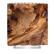 Crack Canyon Shower Curtain