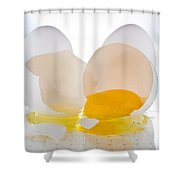 Cracked Egg Shower Curtain