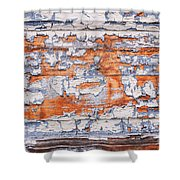 Cracked Wood Paint Shower Curtain