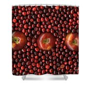 Cranapple Shower Curtain by Christian Slanec