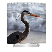 Crane By The Sea Shower Curtain