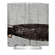 Crane Fly Shower Curtain