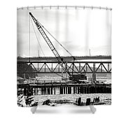 Crane In Winter Shower Curtain