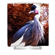 Crane Stare Down Shower Curtain
