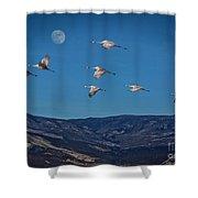 Cranes Across Colorado Blue Shower Curtain