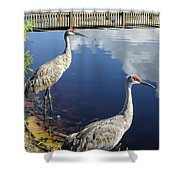 Cranes At The Lake Shower Curtain