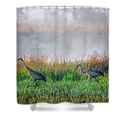 Cranes On Foggy Day Shower Curtain