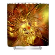 Cranial Supernova Shower Curtain