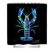 Crawfish In The Dark - Blublue Shower Curtain