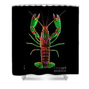 Crawfish In The Dark - Greenred Shower Curtain