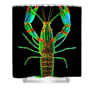 Crawfish In The Dark - Orivibsat Shower Curtain