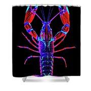 Crawfish In The Dark-  Redblue Shower Curtain