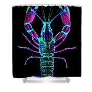 Crawfish In The Dark - Rosegreen Shower Curtain