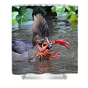 Crayfish? Shower Curtain