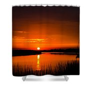 Crazy Beautiful  Shower Curtain