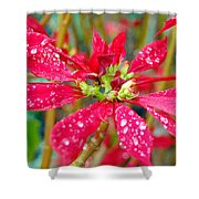 Crazy Dewy Red Flower Shower Curtain