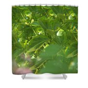 Crazy Floral Two  Shower Curtain