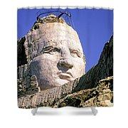 Crazy Horse In Progress II Shower Curtain