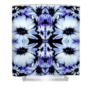 Crazy Lavender Daises Shower Curtain