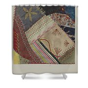 Crazy Quilt (detail) Shower Curtain
