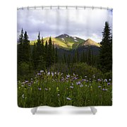 Crazy Wildflowers Shower Curtain by Barbara Schultheis