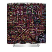 Crazynumbers Shower Curtain
